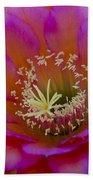 Pink And Orange Cactus Flower Beach Towel
