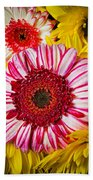 Pink And Yellow Mums Beach Towel
