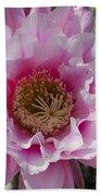 Pink Cactus Flower Beach Towel