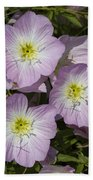 Pink Evening Primrose Wildflowers Beach Towel