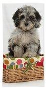 Puppy In A Basket Beach Towel