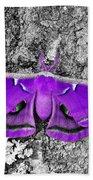 Purple Polyphemus Beach Towel