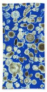 Radiolarian Ooze Lm Beach Towel