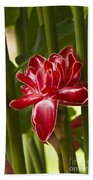 Red Ginger Lily Beach Towel