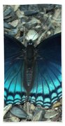 Red Spotted Purple Swallowtail Butterfly Beach Towel