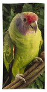Red-tailed Amazon Amazona Brasiliensis Beach Towel