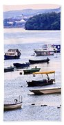 River Boats On Danube Beach Towel by Elena Elisseeva