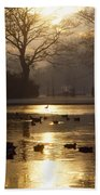 Saint Stephens Green, Dublin, Co Beach Towel