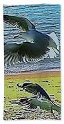 Sea Gulls In Flight  Beach Towel