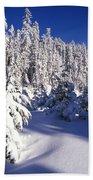 Snow-covered Pine Trees On Mount Hood Beach Towel