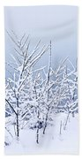 Snowy Trees Beach Towel by Elena Elisseeva
