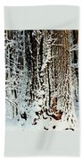 Snowy Woods Beach Towel