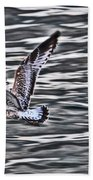 Soaring Gull Beach Towel