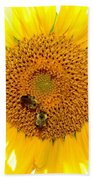 Spider And The Bees Beach Towel
