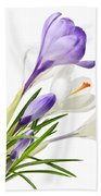 Spring Crocus Flowers Beach Towel