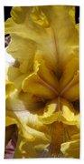 Tall Bearded Iris Named Butterfingers Beach Towel