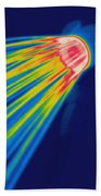 Thermogram Of A Shower Head Beach Towel by Ted Kinsman