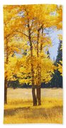 Trees In Autumn Beach Towel