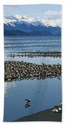 Western Sandpiper Calidris Mauri Flock Beach Towel