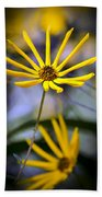 Wild Swamp Daisy Beach Towel