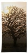 Winter Tree On A Frosty Morning, County Beach Towel