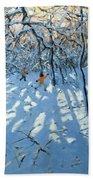 Winter Woodland Near Newhaven Derbyshire Beach Towel