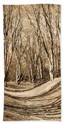 Ambresbury Banks Bronze Age Fortification Beach Towel