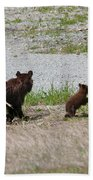 Black Bear Family Beach Towel