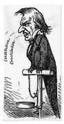 Andrew Johnson (1808-1875) Beach Towel