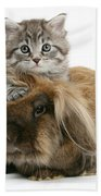 Kitten And Rabbit Beach Towel