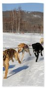 2010 Limited North American Sled Dog Race Beach Towel