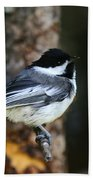 Blackcapped Chickadee Beach Towel