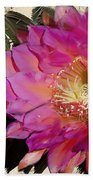 Cactus Flower  Beach Towel