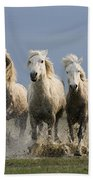 Camargue Horse Equus Caballus Group Beach Towel