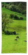 Cows Beach Towel