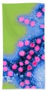 Coxsackie B4 Virus, Tem Beach Towel