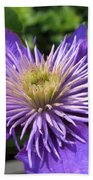 Double Clematis Named Crystal Fountain Beach Towel