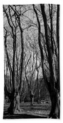 Epping Forest Beach Towel