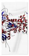 Heat Shock Protein 90 In A Larger Beach Towel