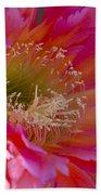 Hot Pink Cactus Flower Beach Towel