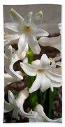 Hyacinth Named Aiolos Beach Towel