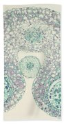 Lily Anther Lm Beach Towel