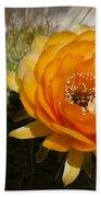 Orange Cactus Flower Beach Towel