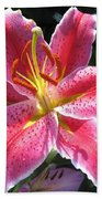 Oriental Lily Named La Mancha Beach Towel