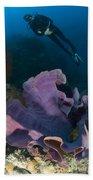 Purple Elephant Ear Sponge With Diver Beach Towel