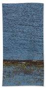 Puurijarvi Beach Towel