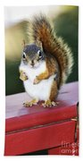 Red Squirrel On Railing Beach Towel