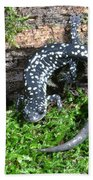 Slimy Salamander Beach Towel