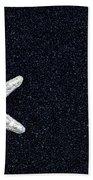 Starfish On Black Sand Beach Towel by Joana Kruse