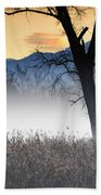 Trees With Fog Beach Towel